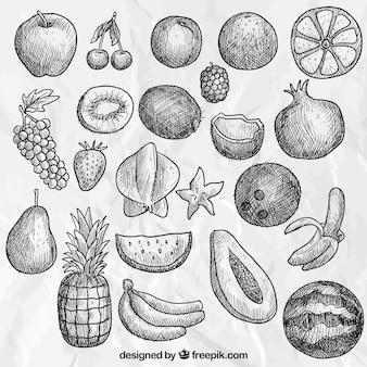 la collecte des fruits dessinés à la main