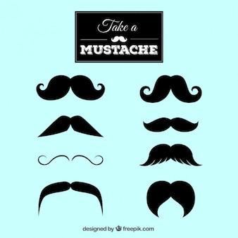 la collecte des moustaches