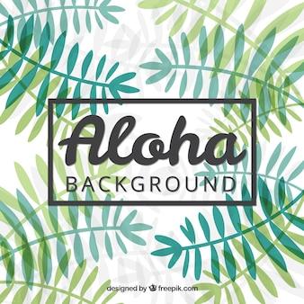 Main palme tirée laisse aloha fond