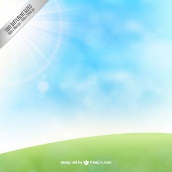 Meadow et fond de ciel