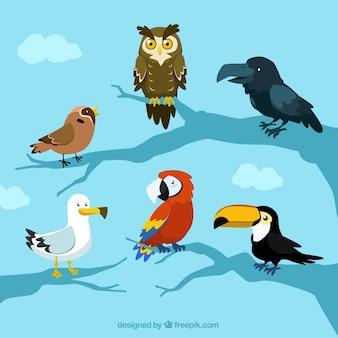 mignon de bande dessinée matériel vecteur oiseau