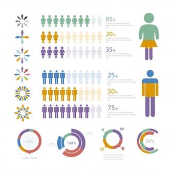 Modèle d'infographie avec statistiques