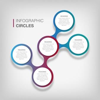 modèle infographique circulaire