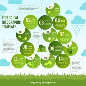 Modèle infographique écologique