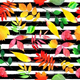 Motif transparent d'automne