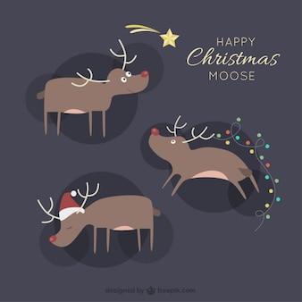 Orignaux de Noël
