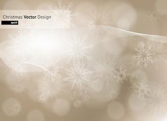 Ornement forme hiver flocons de neige 2011