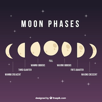 Phases de lune illustration