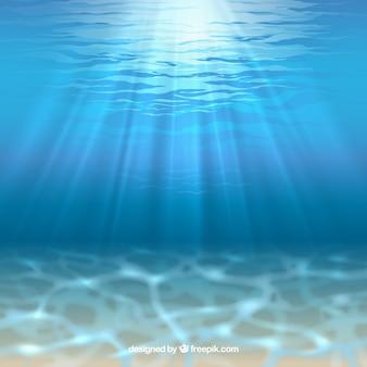 Plancher de la mer avec le soleil