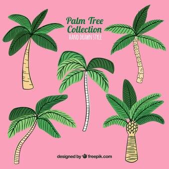 Plusieurs palmiers dessinés à la main