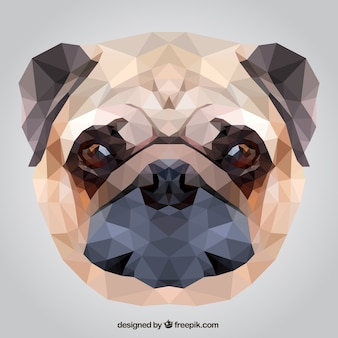 Polygonale chien de roquet