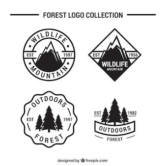 Quatre logos de l'aventure et le camping dans la forêt