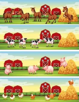 Quatre scènes d'animaux de ferme dans la ferme