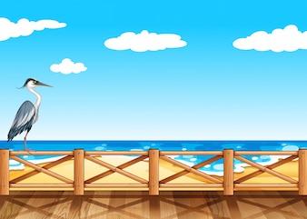 Scène avec illustration de la grue et de l'océan