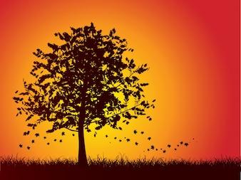 Silhouette d'un arbre d'automne avec des feuilles tombant