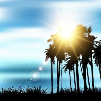 Silhouette d'un paysage de palmiers