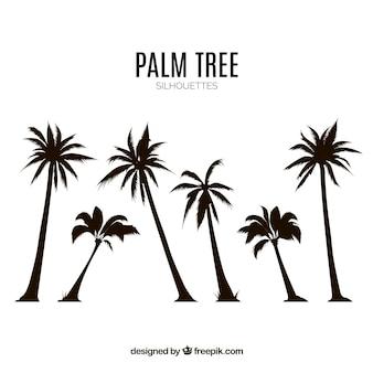 Silhouettes ensemble de palmiers