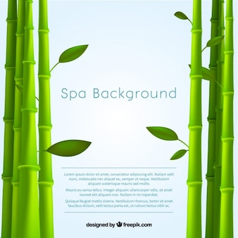 Spa background avec du bambou