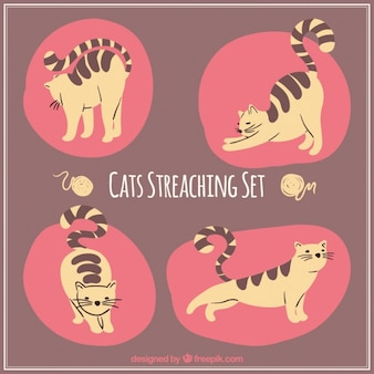 Stretching Cat Set