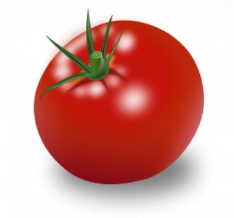 Tomate vecteur de fruits rouges