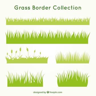Types d'herbe ensemble