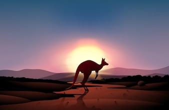 Un coucher de soleil au désert avec un kangourou