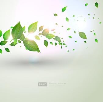 Usine de brousse fraîche de printemps