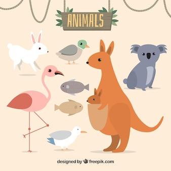 Variété d'animaux dans la conception plate