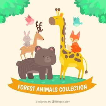 Variété d'animaux forestiers