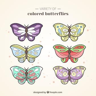 Variété de papillons colorés