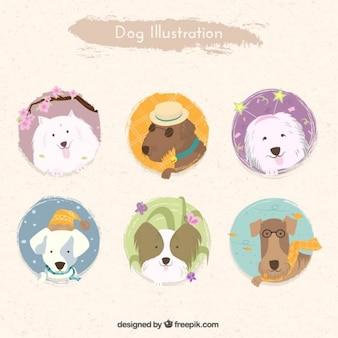 Variété des illustrations de chiens