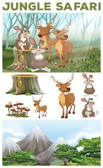 Wild animals in the jungle safari illustration