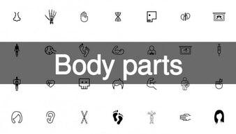 199 partes del cuerpo pack de iconos