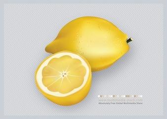 3d vector de frutas limones