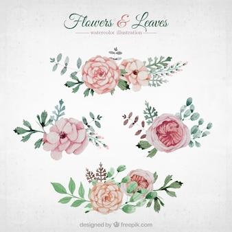Acuarela flores y las hojas