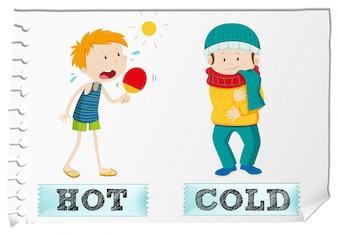 Adjetivos opuestos calientes y fríos