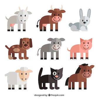 Adorable colección de animales en diseño plano