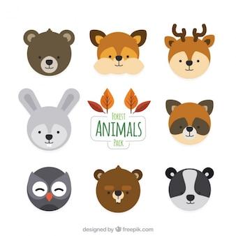 Adorables avatares de animales