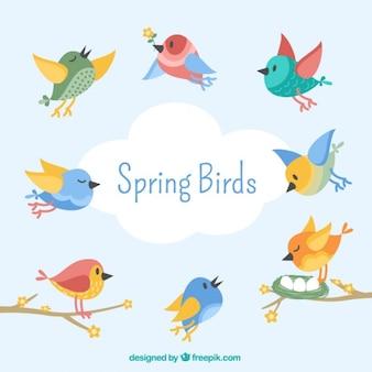 Adorables pájaros en estilo vintage