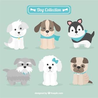 Adorables perritos