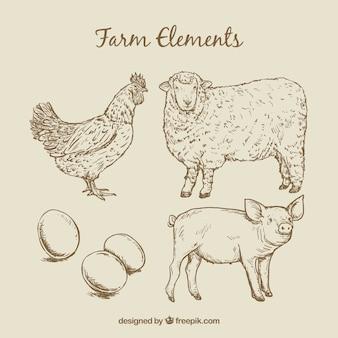 Animales de granja bosquejos y huevos