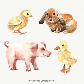 Animales de granja en acuarela
