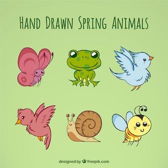 Animales de primavera dibujados a mano