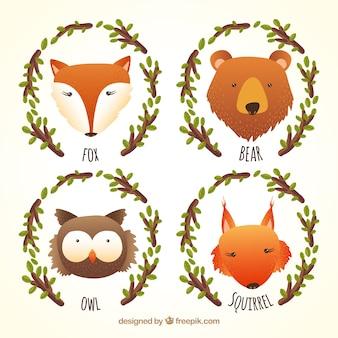 Animales ilustración