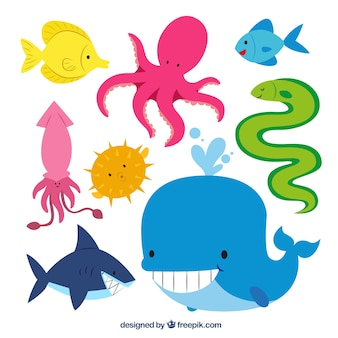 Animales lindos de mar