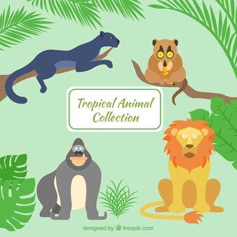 Animales salvajes dibujados a mano en la jungla