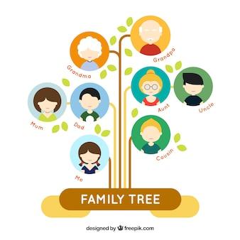 Árbol de familia plano fantástico con círculos de colores