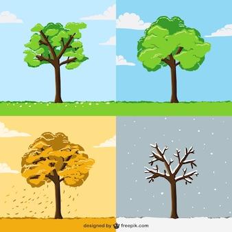 Árbol en diferentes estaciones del año