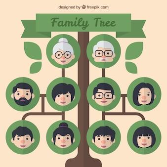 Árbol genealógico con círculos verdes