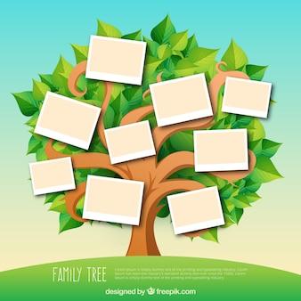 Árbol genealógico con hojas en tonos verdes